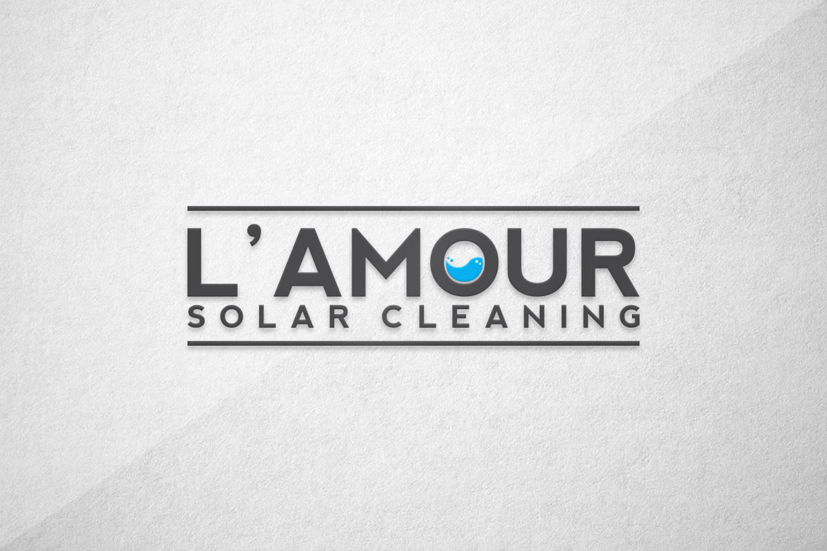 graphic design logo dry cleaning